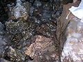 GrottaGelo2.JPG