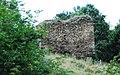 GuentherZ 2010-07-31 0162 Weikertschlag Ruine.jpg
