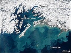 GulfOfAlaska AMO 2008073.jpg