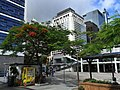 HK Central Edinburgh Place Bus Stop trees May-2012.JPG