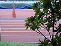 HK Wan Chai Sports Ground Running 01.jpg