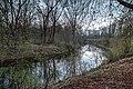 Haltern am See, Stever (NSG Lippeaue) -- 2016 -- 1770-4.jpg