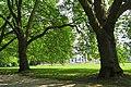 Hamm, Germany - panoramio (5264).jpg
