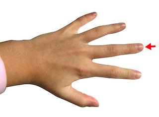 Middle finger finger