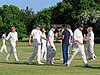 Hatfield Heath CC v. Netteswell CC on Hatfield Heath village green, Essex, England 32.jpg