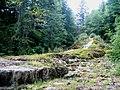 Haute-Marne Rouvres-Sur-Aube Cascade Etuf 09072008 - panoramio.jpg