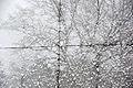 Heliostat in der Kälte Heliostat in the cold (8404657551).jpg