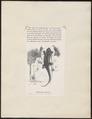 Hemidactylus fraenatus - 1700-1880 - Print - Iconographia Zoologica - Special Collections University of Amsterdam - UBA01 IZ12300077.tif
