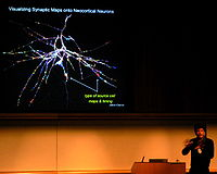 Henry Markram - Visualizing Synaptic Maps onto Neocrortical Neurons.jpg