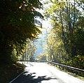 Herbstliche Landstraße zwischen Zeckendorf und Ludwag - panoramio.jpg