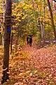 Hiking trail (1584739276).jpg