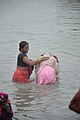 Hindu Devotees Taking Holy Dip In Ganga - Makar Sankranti Observance - Kolkata 2018-01-14 6591.JPG