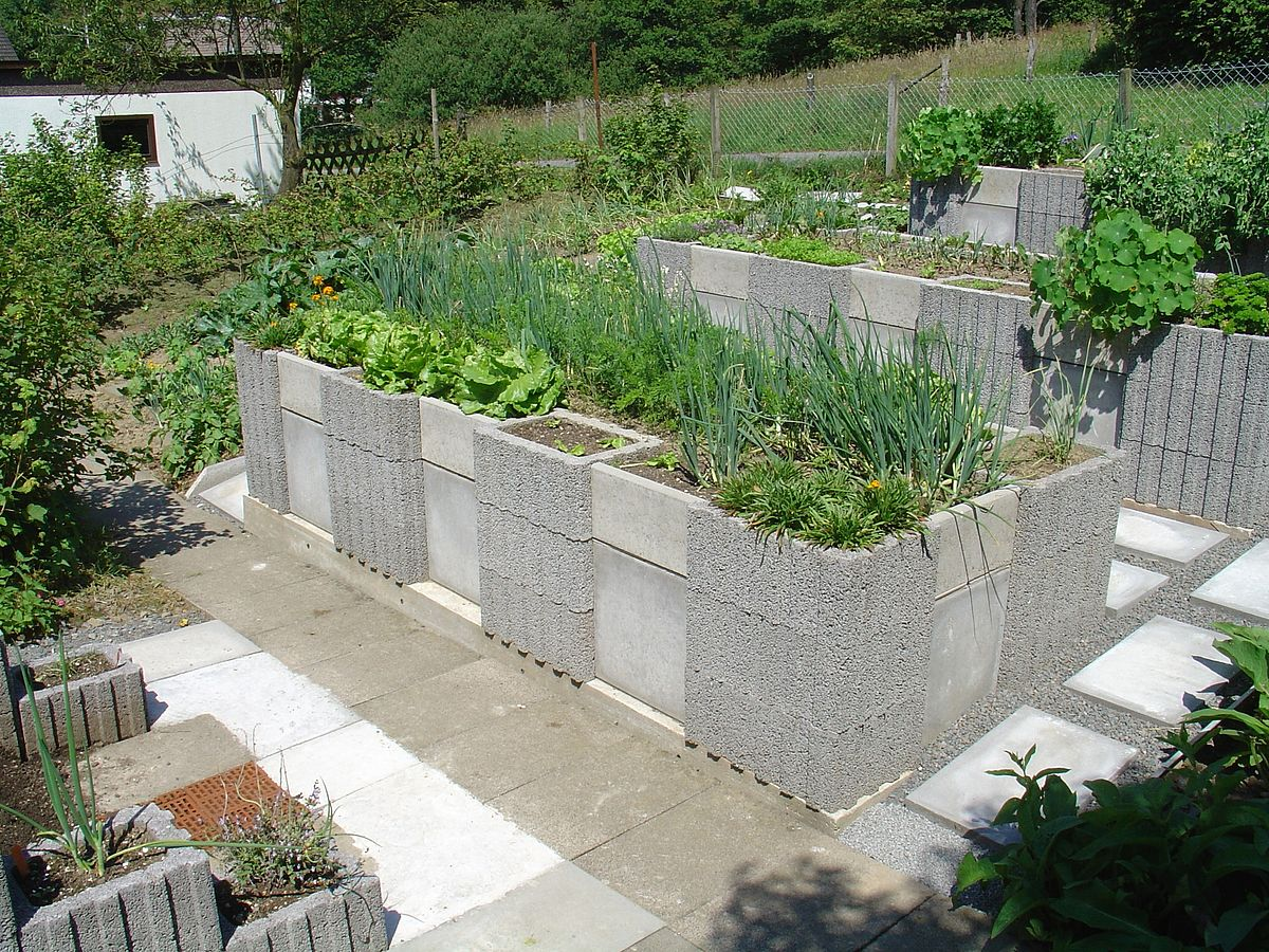 Raised-bed gardening - Wikipedia on raised garden layout plans, raised bed designs, raised garden plans designs, simple raised garden plans, raised vegetable garden design ideas, container flower garden plans, raised garden layout ideas, raised garden border ideas,