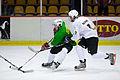 Hokeja spēlē tiekas Saeimas un Zemnieku Saeimas komandas (6818361163).jpg