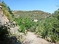Holidays Greece - panoramio (218).jpg