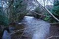 Horner Water, West Luccombe - geograph.org.uk - 1660652.jpg
