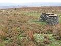 Hurst Moor, grouse butts - geograph.org.uk - 69128.jpg