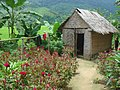Hut as toilets in a flower garden in Laos.jpg