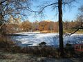 Icy Lake, Central Park (2111684172).jpg