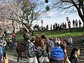 Ieyasu-Gyoretsu-13.jpg