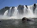 Iguaçu Falls (15905996006).jpg
