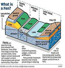 Illustrated diagram of a fen.jpg