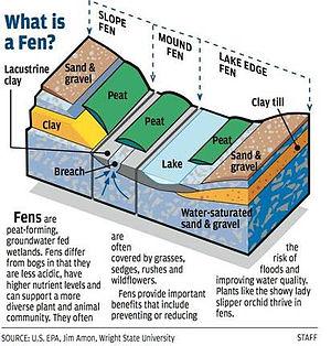 Fen - Image: Illustrated diagram of a fen