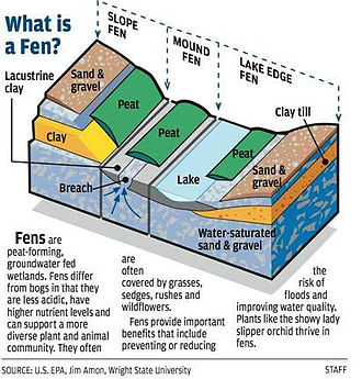 Fen - Image: Illustrated diagram of a fen