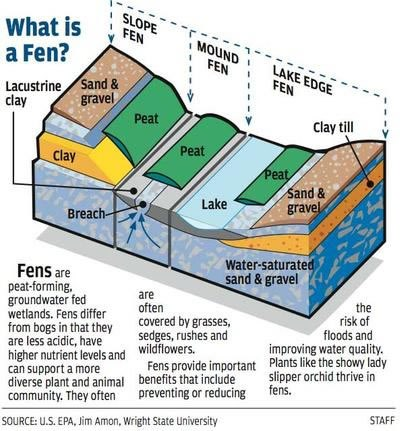Illustrated diagram of a fen