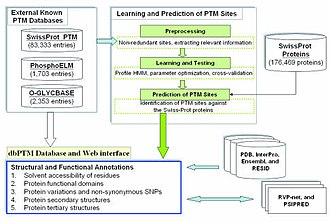 Post-translational modification - Flowchart of the process and the data sources to predict PTMs.