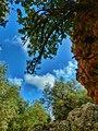 Imbros gorge (13720383225).jpg