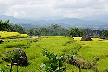 Indonesian landscape of Celebes.jpg
