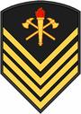 Insignia BM P2.PNG