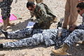 Iraqi Counter Explosive Team Training Exercise in Tikrit, Iraq DVIDS177262.jpg