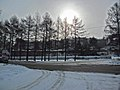 Irkutsk. Akademgorodok. February 2013 - panoramio (131).jpg
