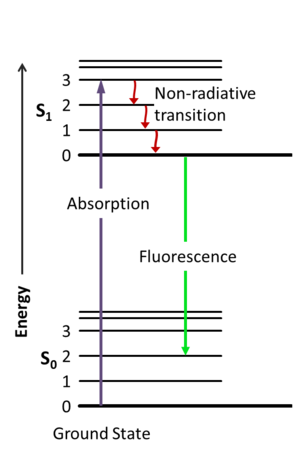 Jablonski diagram - Jablonski diagram including vibrational levels for absorbance, non-radiative decay, and fluorescence.