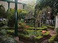 Jardín interior (2).JPG