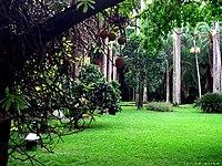 Jardin botanico ccs.jpg