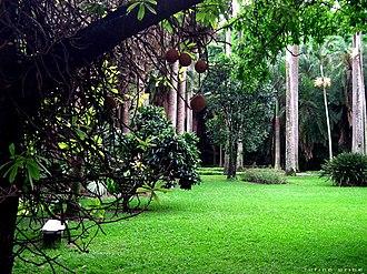 Caracas Botanical Garden - Image: Jardin botanico ccs