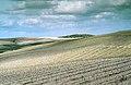 Jerez de la Frontera (1981) 12.jpg