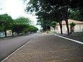 Jesuitas. PR . Paraná, Brasil. 185 - panoramio.jpg