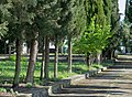 Jewish Cemetery Corfu Town 05.jpg