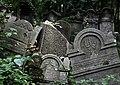 Jewish cemetery Szydlowiec 26415084.jpg