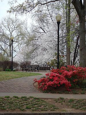 John Howell Memorial Park - John Howell Park