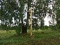 Joniškio sen., Lithuania - panoramio (3).jpg