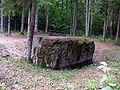 Juodasis akmuo2 2006-07-12.JPG