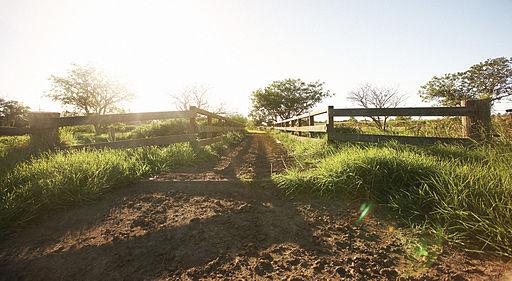 Jurlique farm in Adelaide Southern-Australia