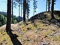 Künstlicher Hügel bei Ruine Dürnstein 03.jpg