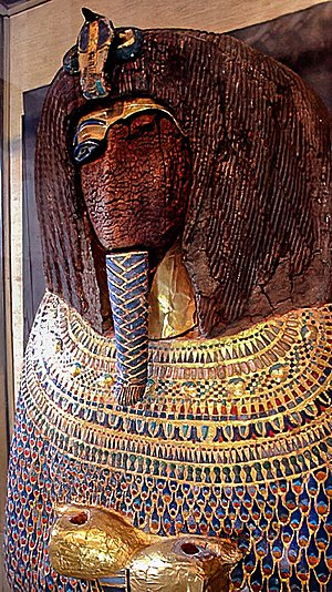 KV55 - The desecrated royal coffin found in Tomb KV55