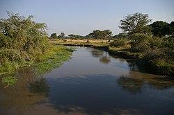 Katuma River.jpg